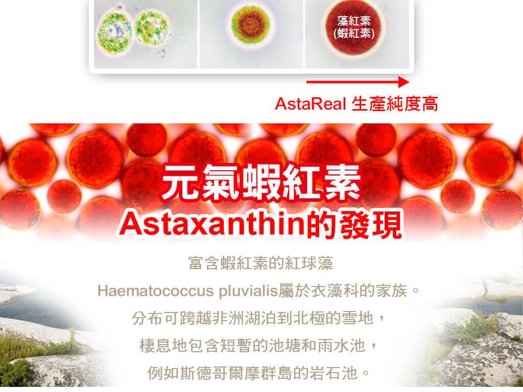 元氣蝦紅素Astaxanthin的發現
