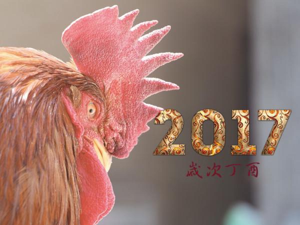 2017歲次丁酉雞年
